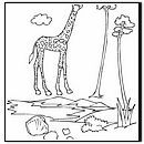 zoo (10) Coloring Page
