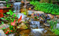 Double cascade waterfall designed and installed by Full Service Aquatics of Summit, NJ