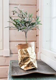 uashmama gold, olivetree, paperbag, loghome