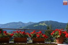 Sunny location in Wagrain: Family home in panoramic position! — LuxuryRealEstate.com