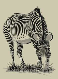 Art made from Barcodes! Zebras are just living, breathing barcodes. Barcode Art, Barcode Design, Illustrator Tutorials, Cute Illustration, Graphic Design Inspiration, Lovers Art, Art Images, Find Art, Cool Art
