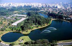 O Ibirapuera é ótimo para passeios a pé ou de bicicleta e para piqueniques!