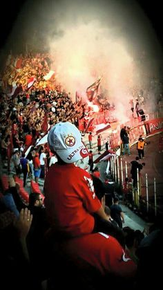 Happy 68th birthday, my life !!! 05.05.1948 ❤ Ultras Football, Red Star Belgrade, I Wallpaper, Happy Birthday Me, My Life, Cute Animals, Casual Styles, Terraces, Colorado