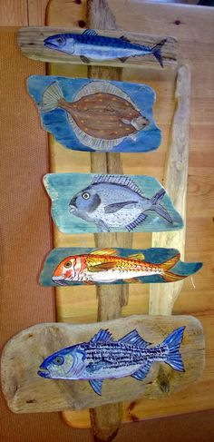 I put all my painted fish together on a long piece of driftwood! Looks really good in my little cottage now :-) From bottom to top it is Bass, Red Mullet, Gilthead Bream,Plaice and Mackerel