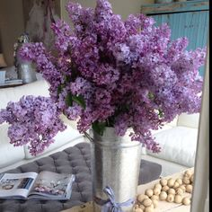 Shabby Chic Couture Lilacs fresh every Friday  Love cool greys - linen, velvet, soft cottons. Lavender or soft rose to the side.