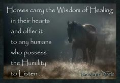 Horses carry the Wisdom of Healing...