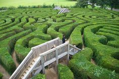Longleat Hedge Maze in the UK. 												  											  							Warminster,   						  																  							Wiltshire,