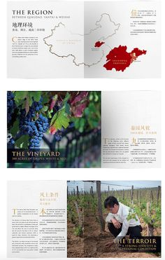 Chateau9Peaks brochure pages, a bilingual brochure we created for a great wine brand in Qingdao, China.