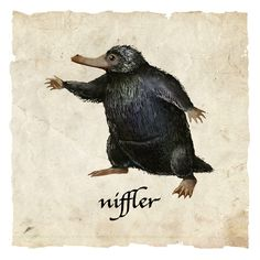 niffler and newt scamander image