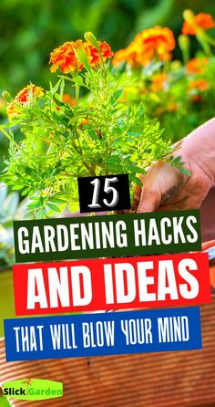 15 Gardening Hacks And Ideas That Will Blow Your Mind.  Are you ready to get back out in your garden?  Or are you looking for some tips and tricks for beginners to start an outdoor or indoor garden? These DIY Gardening Hacks will save you time and money this season!  You'll love some of these genius hacks and budget friendly gardening tips! Read on to discover my favorite DIY Gardening Hacks…      #garden #gardening #organicgardening #vegetablegarden #urbangardening #hacks #organicgarden