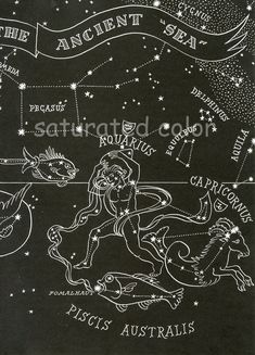 1948 Ancient Sea Constellations - Pisces Capricorn Aquarius - Night Sky Star Chart Map - Zodiac