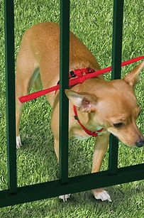 This will keep your pet from slipping through gate and fence cracks. Harness sizes range from extra small to extra large.