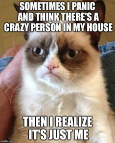 IF THERE WAS A CRAZY PERSON IN MY HOUSE,(BESIDES ME), I WOULD FEEL HAPPY TO KNOW I WASN'T THE ONLY ONE....