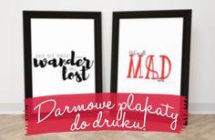 Wordpress, Blog, Pink, Decor, Decoration, Blogging, Decorating, Pink Hair, Roses