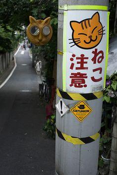 Yanaka (cat friendly town),Tokyo © Takayuki Miki (三木貴幸)