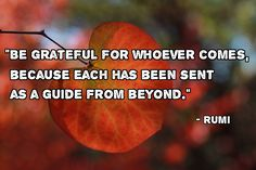 """""""Be grateful for whoever comes, because each has been sent as a guide from beyond."""" - Rumi"""