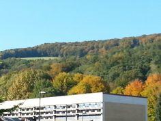 JKU im Herbst Johannes Kepler, Austria, University, Culture, Linz, Autumn, Community College, Colleges