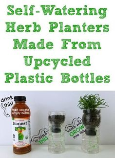 Learn how to make these DIY self-watering herb planters from upcycled plastic bottles. #HonestSustainabiliTEA #RefreshinglyHonest #ad