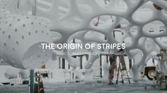 Under Magnitude, the most recent permanent structure from MARC FORNES / THEVERYMANY, evolves the studio's invention of a topological-walking stripe-based material system: 'structural stripes.'