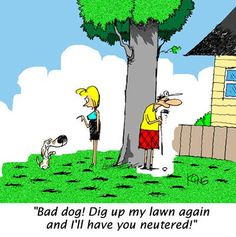 Florida Cartoon Pictures | Follow the comic antics of Jerry King's Big Shooter