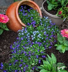 Spilled Flower Pot Ideas – Spilled flower pots are a whimsical and humorous trend in garden design. This is an easy concept to use in any backyard garden, and requires only a little thought and creativity. Garden Deco, Garden Pots, Container Plants, Container Gardening, Hydroponic Gardening, Beautiful Gardens, Beautiful Flowers, Pinterest Garden, Colorful Garden