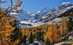 Indir duvar kağıdı dağ manzara, kış, kar, dağlar, Bernina Aralığı, Alpler, Morteratsch Buzulu, İsviçre