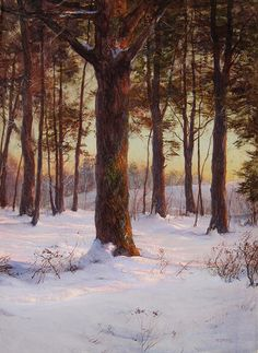 WALTER LAUNT PALMER The Pine Grove