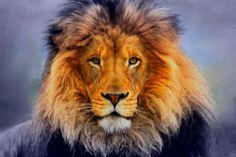 Neu in meiner Galerie bei OhMyPrints: Löwe abstrakt