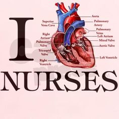 I love all my fellow Cardiology nurses! You are the best!