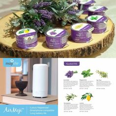 #mojilife #essentialoils non-toxic, hypoallergenic home fragrance. Mojiproducts.com/michellekreinbrook