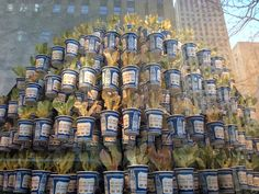 Vertical garden made of stacked/planed NYC deli coffee cups. Spotted @Anthropologie