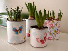 Decorate empty tins. Lege conserveblikken decoreren met pip-behang en er voorjaarsplantjes in plaatsen.