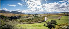6 things to do in the Robertson Wine Valley - Africa Geographic Stuff To Do, Things To Do, South Africa, Wedding Venues, Scenery, Mountain, Tours, Spaces, Landscape