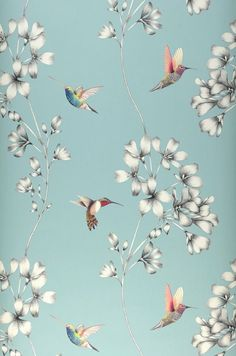 wallpaper design of etched trailing flowers with vivid coloured amazilia hummingbirds. Harlequin Wallpaper, Pattern Wallpaper, Black Wallpaper, Chinoiserie, Flower Wallpaper, Iphone Wallpaper, Beautiful Wallpaper, Diamond Wallpaper, Wallpaper Backgrounds