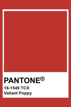 Pantone Color Chart, Pantone Colour Palettes, Pantone Colours, Pantone Tcx, Pastel Color Wallpaper, Crazy Colour, Colour Board, Branding, Color Swatches