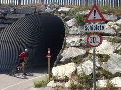 Schilderwald auch ohne Schnee;) Tours, Snow, Woodland Forest, Shop Signs, Nature