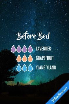 Before Bed Diffuser Blend