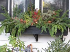 Winter Flower Boxes   ourimgs.com - The Hippest Galleries!