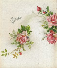 Bride ~ Wedding Album, Page 9 Vintage Love, Vintage Flowers, Vintage Prints, Vintage Floral, Vintage Photos, Vintage Ephemera, Vintage Cards, Rose Illustration, Rose Design