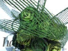 Green Hapene and flax flowers by Artiflax Flax Flowers, New Zealand Art, Centrepieces, Floral Designs, Plant Leaves, Weaving, Bear, Green, Plants