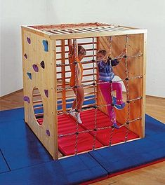 this would be perfect! monkey bars inside it, rock wall, rope climb!