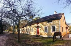Genadendal historic village and museum is just 6 km from Greyton - beautiful, quaint and one of the most popular towns to visit in the Western Cape. Places To Visit, Museum, Plants, Spaces, Beautiful, Flora, Plant, Places Worth Visiting, Planets