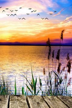 Resin Diamond Painting cross stitch pattern Diy Needlework Patterns Set For Stitching round diamond Embroidery Lakeside scenery Pictures To Paint, Nature Pictures, Landscape Pictures, Photos Of Nature, Painting Pictures, Nature Nature, Nature Crafts, Landscape Photography, Nature Photography