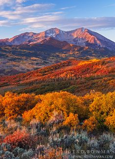 Mount Sopris, White River National Forest, Colorado; photo by Tad Bowman