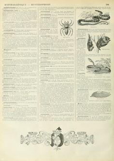 Wings of Whimsy: Noveau Larousse Illustré - H #vintage #french #dictionary #alphabet #capital #initial