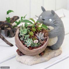 Stadio Ghibli Miyazaki Hayao My Neighbor Totoro Gardening Planter from Japan New: