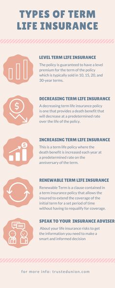There Are Numerous Benefits Of Term Life Insurance. But Before Having Term  Life Insurance You Should Know All The Types Of Term Life Insurance.