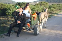 Donkey cart, Garden Routh Game Lodge Wedding Destinations, Destination Wedding, Game Lodge, Wedding Doll, Donkeys, Pictures To Paint, Lodges, South Africa, Baby Strollers