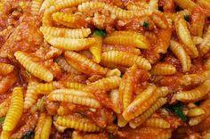 Maloreddus alla Campidanese - sono un piatto gustosissimo tipico della cucina sarda in cui il tradizionale formato di pasta è condito con un particolare ragù di salsiccia arricchito dall'aroma dello zafferano.