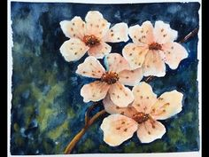 ▶ How to paint Cherry Blossoms in Watercolor - YouTube